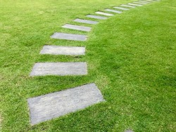Pavement in the garden with green grass