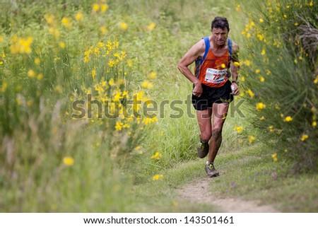 PAVIE, FRANCE - JUNE 23: Senior runner  at the Trail of Pavie, on June 23, 2013, in Pavie, France. All around him, gorse in full bloom.