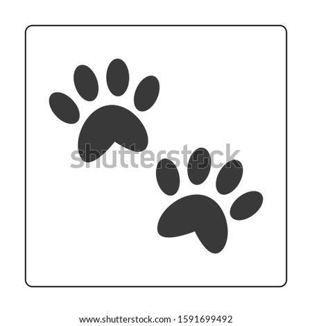 paw of cat, paw of dog