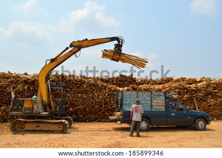 PAYAKKAPHUMPHISAI, MAHASARAKHAM - APRIL 7 : Eucalyptus trees are collected for paper industry on April 7, 2014 in Payakkaphumphisai, Mahasarakham, Thailand.