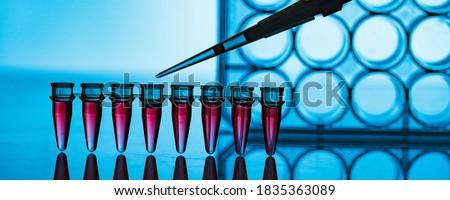 PCR strip in genetic laboratory Photo stock ©