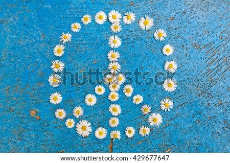 Peace sign, peace symbol, peace design created of daisy flowers on textured blue background #429677647