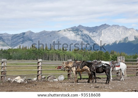 Peaceful and bucolic view of horsed, forests and mountains.