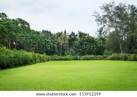 Peaceful Garden