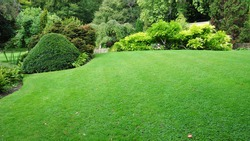 Peaceful Garden with a Freshly Mown Lawn