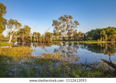 Peaceful landscape at sunrise in White water Billabong, Kakadu National Park, Northern Territory, Australia