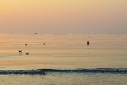 Peaceful morning by the sea at sunrise, silhouette of fish farm seen on the horizon