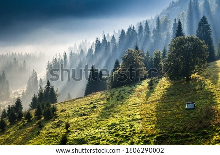 Peaceful morning in the mountain with forest and fog in background. Morning rays and fog above a village in mountains.