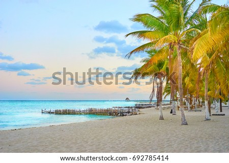 Peaceful North Beach with palm trees / Isla Mujeres Beach Mexico / Summer Vacation in Mexico Foto stock ©