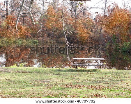 Peaceful pond with a picnic table