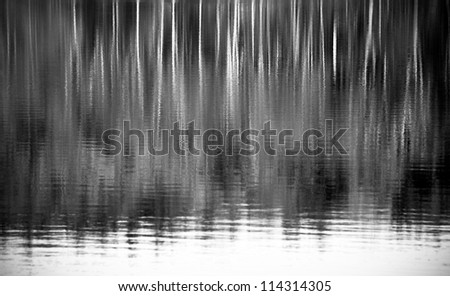 Peaceful reflection of trees in water.