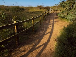 Peaceful rural scene of a wooden track in a natural area winding it's way towards the beach