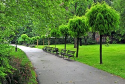 Peaceful summer park with a sidewalk, Belgrade