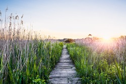 Peaceful sunset with a wooden walkway