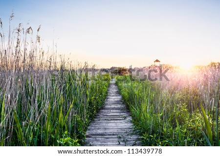stock photo peaceful sunset with a wooden walkway 113439778 - Каталог — Фотообои «Природа, пейзаж»