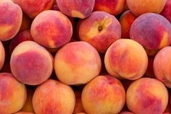 Peach close up.