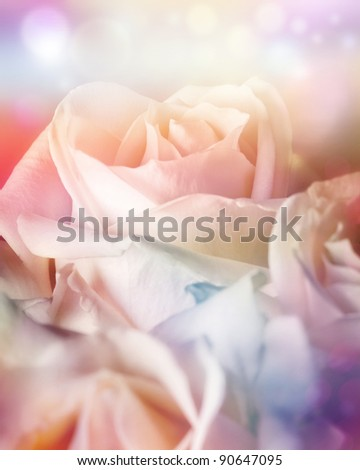 Peach roses on soft background with bokeh in watercolor look