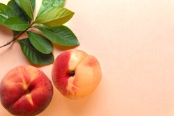 Peaches fruit with leaves decoration on soft pink color background.