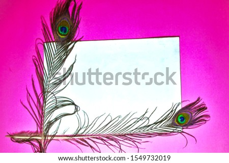 peacock feathers copy space,text written copy space,pink background,white background on peacock tail,copy space,pink background with copy space,