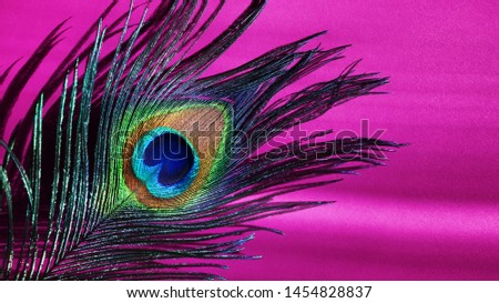 Peacock feathers on pink background. Carnival. Colored feather.  #1454828837