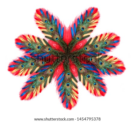 Peacock feathers on white background. Carnival. Colored feather. #1454795378