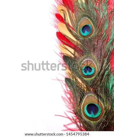 Peacock feathers on white background. Carnival. Colored feather. #1454795384