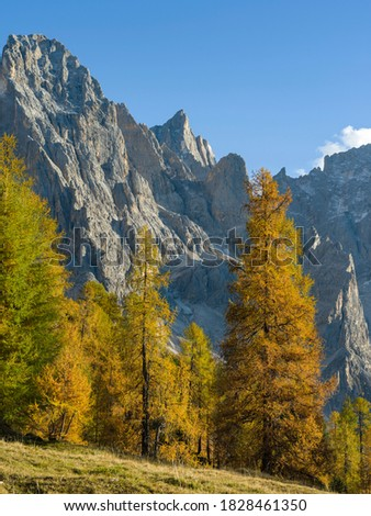 Peaks towering over Val Venegia. Pala group (Pale di San Martino) in the dolomites of Trentino, Italy. Pala is part of the UNESCO World Heritage Site. Foto stock ©