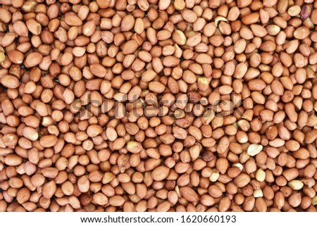Peanut also known as groundnut backdrop