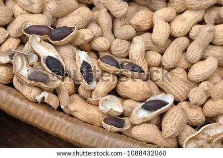 Peanut is a very nutritious nut. #1088432060