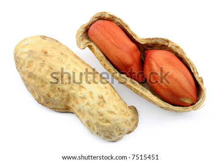 Peanuts in a shell, isolated on white