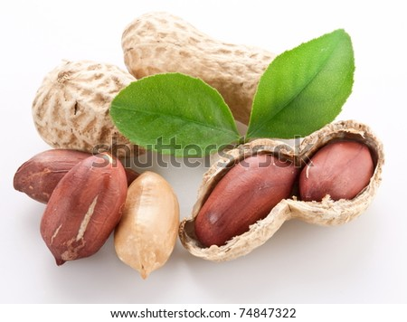 Peanuts. Isolated on a white background.