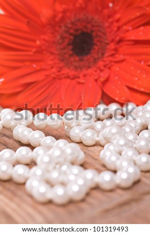 Pearl necklace and red gerbera flower