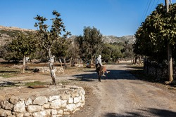 peasant woman riding a donkey, water wells and fig trees