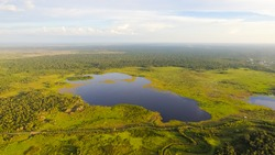 Peat Swamp Forest landscape with big lake in the middle. Central Borneo Plain. Aerial view. Peat swamp forests and swamps of Borneo aerial View.