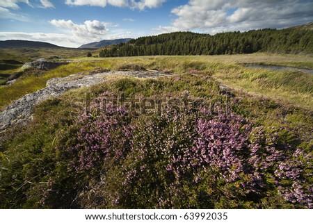 Peatlands in the county of Connemara, Ireland