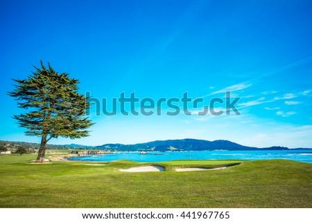 Pebble Beach Golf Course 18th Hole Green #441967765