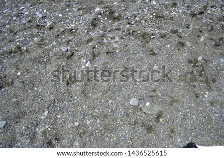 Pebble beach. Textural background with pebble beach #1436525615