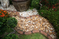 pebble path in the garden