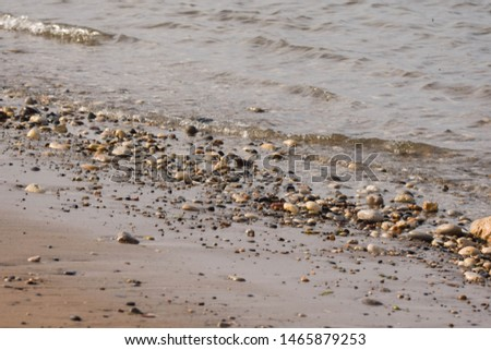 Pebbles glistening on a shoreline