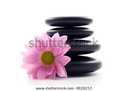pebbles stack with pink daisy isolated on white