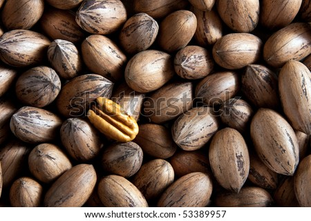 Pecan nuts in and out of shells