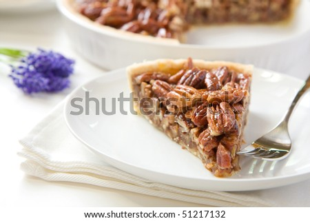 Pecan Pie slice without whipped cream