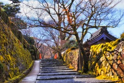 Pedastrian walkway between old stone walls covered by green moss and fungus in historic rural Japanese village Ohara near Kyoto.