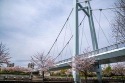 Pedestrial bridge in japan park.bridge, pedestrian, valley, suspension, clara, modern, transportation, bay, trail, blue, area, footbridge, sky, river, architecture, structure, steel, design, dusk, bic