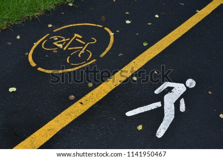 Pedestrian and bicycle riders sharing the street lanes with road marking in the city park #1141950467