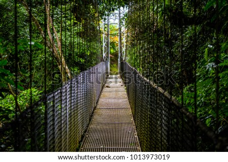 Pedestrian bridge in a Costa Rican rainforest #1013973019