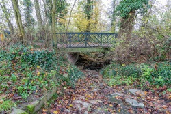 Pedestrian bridge over a semi-dry stream with little water flowing with stones and brown leaves, autumn trees, wild vegetation and climbing plants, cloudy day in Stein, South Limburg, Netherlands