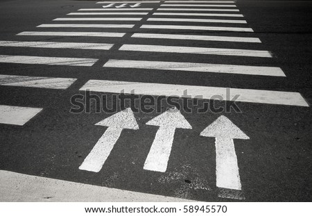 Pedestrian crossing with road marking: white arrows and rectangles on dark asphalt.