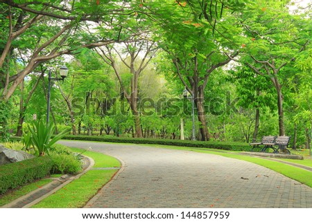 Pedestrian walkway for exercise lined up with beautiful tall - Shutterstock ID 144857959