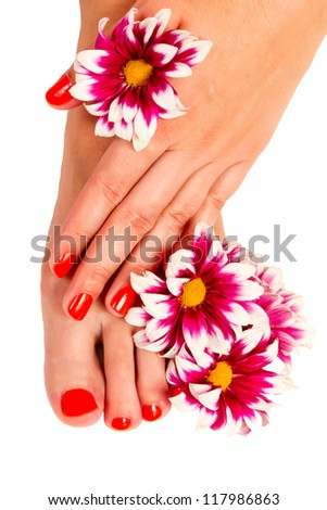 pedicure feet, manicure hands young woman and yellow gerber flower isolated on white background